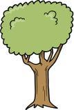 Illustrazione di vettore dell'albero Fotografia Stock Libera da Diritti