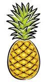 Illustrazione di vettore dell'ananas Fotografia Stock Libera da Diritti