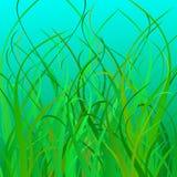 Illustrazione di vettore dell'erba del mare Fotografia Stock Libera da Diritti