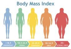 Illustrazione di vettore dell'indice di massa corporea da sottopeso ad estremamente obeso Siluette della donna con differenti gra illustrazione di stock