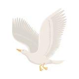 Illustrazione di vettore dell'uccello di volo del gabbiano del fumetto Fotografia Stock Libera da Diritti