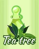 Illustrazione di vettore della bottiglia di olio dell'albero del tè Fotografia Stock Libera da Diritti