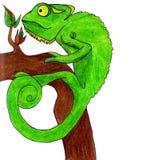 Illustrazione di vettore della carta del camaleonte Immagini Stock