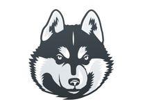 Illustrazione di vettore della testa del husky siberiano Fotografie Stock