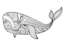 Illustrazione di vettore delle pagine di coloritura della balena Fotografia Stock