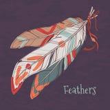 Illustrazione di vettore delle piume decorative etniche Royalty Illustrazione gratis