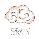 Illustrazione di vettore dello scarabocchio del cervello Fotografie Stock Libere da Diritti