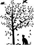 Illustrazione di vettore dello sguardo fisso del gatto gli uccelli sopra  Fotografie Stock