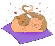Illustrazione di vettore di amore dei gatti Fotografie Stock