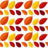 Illustrazione di vettore di Autumn Leaves Seamless Pattern Background Immagini Stock
