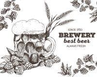 Illustrazione di vettore di birra Materia prima per fare: luppolo e vetro del ramo Insieme del menu del pub Fotografia Stock