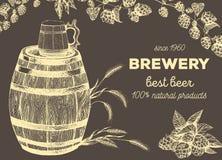 Illustrazione di vettore di birra Materia prima per fare: luppolo ed orzo del ramo Menu del pub insieme Immagini Stock Libere da Diritti