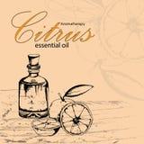 Illustrazione di vettore di olio essenziale dell'arancia Immagine Stock Libera da Diritti