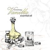 Illustrazione di vettore di olio essenziale di vaniglia Fotografie Stock