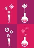 Illustrazione di vettore di simboli e delle icone di concetto di fragranza del profumo Immagine Stock