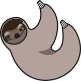 Illustrazione di vettore di un bradipo Immagine Stock