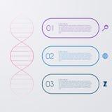 Illustrazione di vettore di un infographics della molecola del DNA Immagini Stock Libere da Diritti