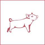 Illustrazione di vettore di un maiale Fotografie Stock