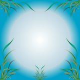 Illustrazione di vettore - fiori e foglie delle piante Fotografia Stock Libera da Diritti
