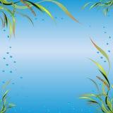 Illustrazione di vettore - fiori e foglie delle piante Immagini Stock Libere da Diritti