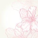 Illustrazione di vettore Fiori rosa Immagini Stock Libere da Diritti
