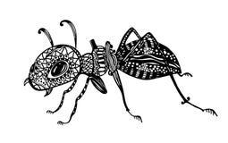 Illustrazione di vettore - formica Linea arte di scarabocchio di arte Libri da colorare per gli adulti, anti-sforzo Bianco nero c royalty illustrazione gratis