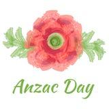 Illustrazione di vettore di giorno di Anzac di un fiore luminoso di rosso del papavero Immagini Stock Libere da Diritti