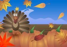 Illustrazione di vettore Giorno di ringraziamento La Turchia, foglie di autunno e zucche Immagine Stock