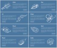 Illustrazione di vettore messa manifesti dell'ostrica e del pettine illustrazione vettoriale