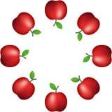 Illustrazione di vettore modello della mela rossa realistica sulla decorazione bianca del fondo bandiera Ornamento illustrazione vettoriale