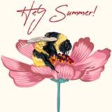 Illustrazione di vettore di modo, stampa della maglietta con il fiore dell'universo e bombo Ciao estate Macro insetto immagine stock