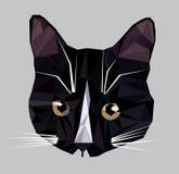 Illustrazione di vettore di poli icona bassa del gatto fotografia stock libera da diritti