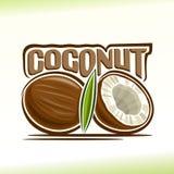 Illustrazione di vettore sul tema della noce di cocco Immagine Stock