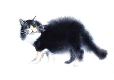 Illustrazione di Watercolored del gatto nero Fotografia Stock