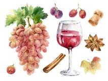 Illustrazione dipinta disegnata a mano dell'acquerello con il mazzo di uva, di bicchiere di vino, di spezie e di altri elementi Immagini Stock Libere da Diritti