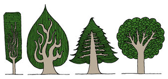 Illustrazione disegnata a mano degli alberi Fotografie Stock