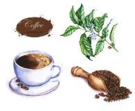 Illustrazione disegnata a mano dell'acquerello del caffè Fotografie Stock