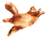 Illustrazione disegnata a mano dell'acquerello del gatto lanuginoso grazioso pigro Materiale illustrativo isolato royalty illustrazione gratis