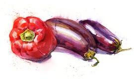 Illustrazione disegnata a mano dell'acquerello di peperone e di melanzane illustrazione di stock