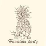 Illustrazione disegnata a mano dell'ananas Fotografia Stock Libera da Diritti