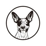 Illustrazione disegnata a mano di progettazione di vettore del cane royalty illustrazione gratis