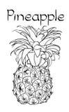 Illustrazione disegnata a mano di trattamento sana vegetariana dell'ananas di vettore Uso per la barra, cocktail, aletta di filat fotografia stock