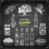 Illustrazione disegnata a mano di vettore con le olive e l'olio d'oliva Immagine Stock