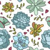 Illustrazione disegnata a mano di vettore del modello senza cuciture succulente del fiore, progettazione piana Fotografia Stock