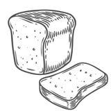 Illustrazione disegnata a mano di vettore del pane Altri tipi di grani, pane della farina Fotografia Stock