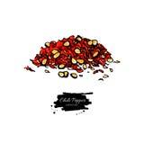 Illustrazione disegnata a mano di vettore di Chili Pepper del mucchio schiacciato Oggetto di verdure di stile artistico illustrazione vettoriale