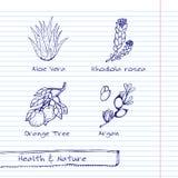 Illustrazione disegnata a mano - insieme della natura e di salute Immagine Stock
