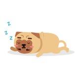 Illustrazione divertente di vettore di sonno del carattere del cane del carlino del fumetto sveglio Immagini Stock Libere da Diritti