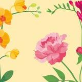 Illustrazione ed estate naturali botaniche delle peonie del fondo del petalo del fumetto di vettore del mazzo del fiore floreale  royalty illustrazione gratis