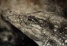 Illustrazione fatta con la compressa digitale, coccodrillo Immagine Stock Libera da Diritti